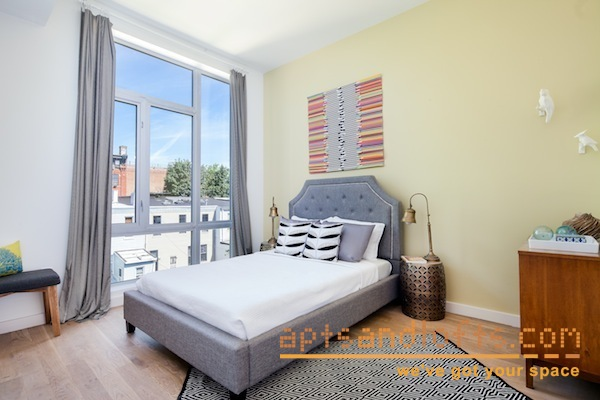 Apartment / Flat / Unit | 13 Melrose Street #1B, New York, NY 6