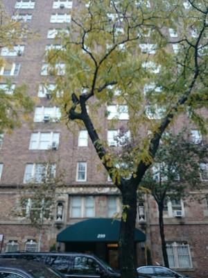299 West 12th St In West Village Sales Rentals